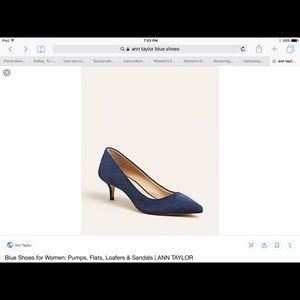 Ann Taylor suede shoes